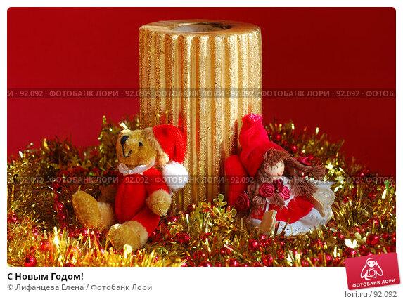 Купить «С Новым Годом!», фото № 92092, снято 1 октября 2007 г. (c) Лифанцева Елена / Фотобанк Лори