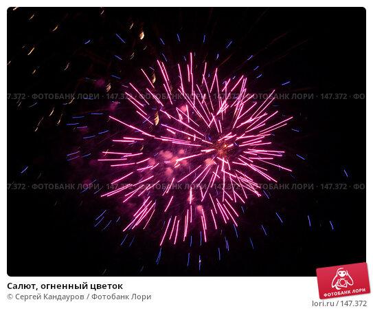 Салют, огненный цветок, фото № 147372, снято 9 мая 2007 г. (c) Сергей Кандауров / Фотобанк Лори