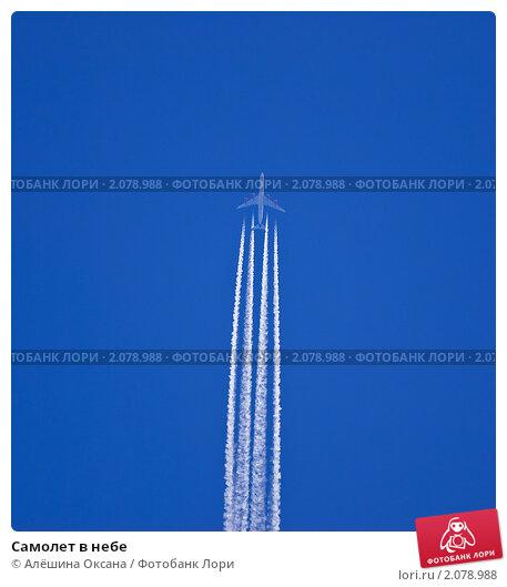 Купить «Самолет в небе», эксклюзивное фото № 2078988, снято 30 мая 2009 г. (c) Алёшина Оксана / Фотобанк Лори