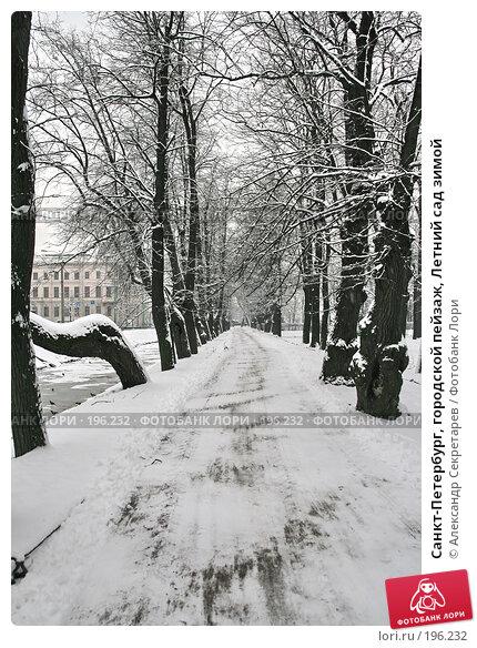 Санкт-Петербург, городской пейзаж, Летний сад зимой, фото № 196232, снято 4 февраля 2008 г. (c) Александр Секретарев / Фотобанк Лори