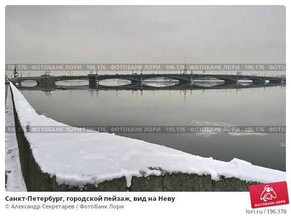 Санкт-Петербург, городской пейзаж, вид на Неву, фото № 196176, снято 4 февраля 2008 г. (c) Александр Секретарев / Фотобанк Лори