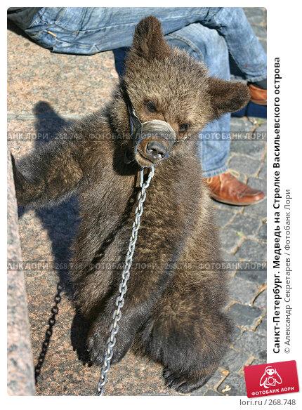 Санкт-Петербург. Медведь на Стрелке Васильевского острова, фото № 268748, снято 28 июня 2005 г. (c) Александр Секретарев / Фотобанк Лори