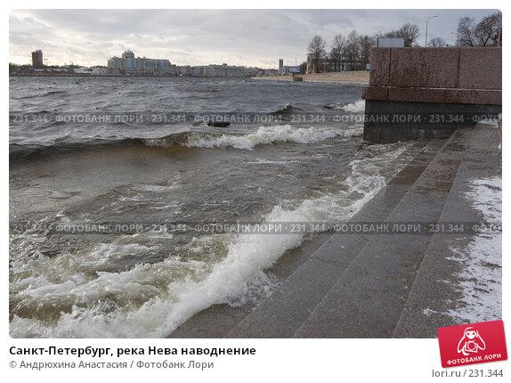 Санкт-Петербург, река Нева наводнение, фото № 231344, снято 3 февраля 2008 г. (c) Андрюхина Анастасия / Фотобанк Лори