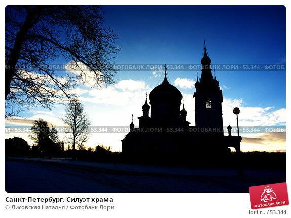Купить «Санкт-Петербург. Силуэт храма», фото № 53344, снято 3 января 2005 г. (c) Лисовская Наталья / Фотобанк Лори