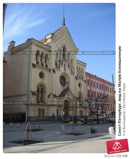 Санкт-Петербург, вид на Малую Конюшенную, фото № 255348, снято 5 апреля 2008 г. (c) A Большаков / Фотобанк Лори