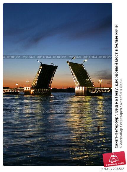Санкт-Петербург. Вид на Неву, Дворцовый мост в белые ночи, фото № 203568, снято 10 июня 2005 г. (c) Александр Секретарев / Фотобанк Лори