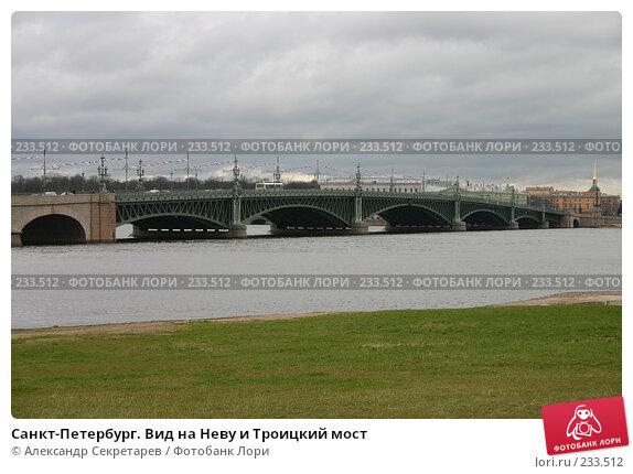 Санкт-Петербург. Вид на Неву и Троицкий мост, фото № 233512, снято 10 мая 2005 г. (c) Александр Секретарев / Фотобанк Лори