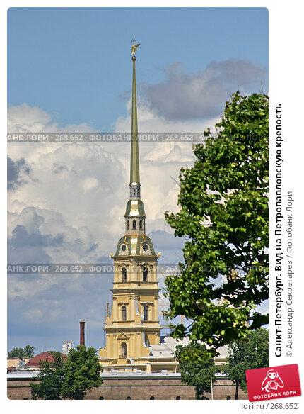 Санкт-Петербург. Вид на Петропавловскую крепость, фото № 268652, снято 28 июня 2005 г. (c) Александр Секретарев / Фотобанк Лори