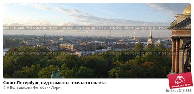 Санкт-Петербург, вид с высоты птичьего полета, фото № 316668, снято 20 июля 2017 г. (c) A Большаков / Фотобанк Лори