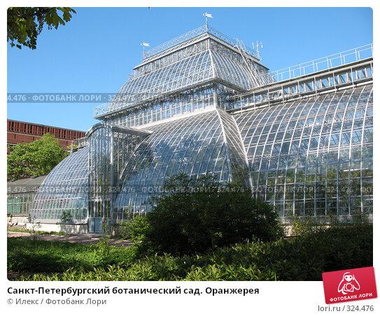 Купить «Санкт-Петербургский ботанический сад. Оранжерея», фото № 324476, снято 17 мая 2008 г. (c) Морковкин Терентий / Фотобанк Лори