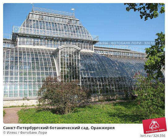 Санкт-Петербургский ботанический сад. Оранжерея, фото № 324556, снято 17 мая 2008 г. (c) Морковкин Терентий / Фотобанк Лори