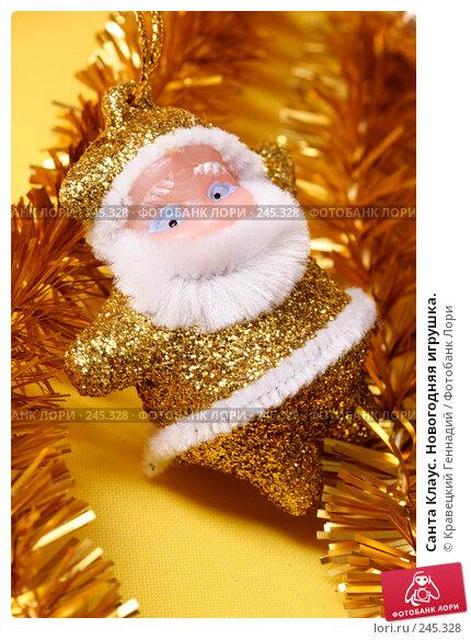 Санта Клаус. Новогодняя игрушка., фото № 245328, снято 15 ноября 2004 г. (c) Кравецкий Геннадий / Фотобанк Лори