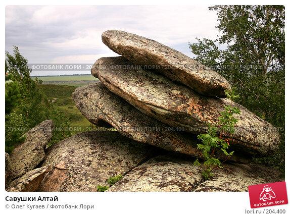 Савушки Алтай, фото № 204400, снято 23 июля 2004 г. (c) Олег Кугаев / Фотобанк Лори