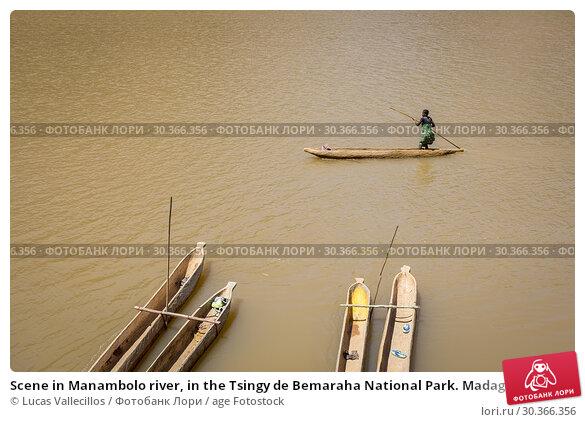 Купить «Scene in Manambolo river, in the Tsingy de Bemaraha National Park. Madagascar, Africa.», фото № 30366356, снято 26 июня 2019 г. (c) age Fotostock / Фотобанк Лори