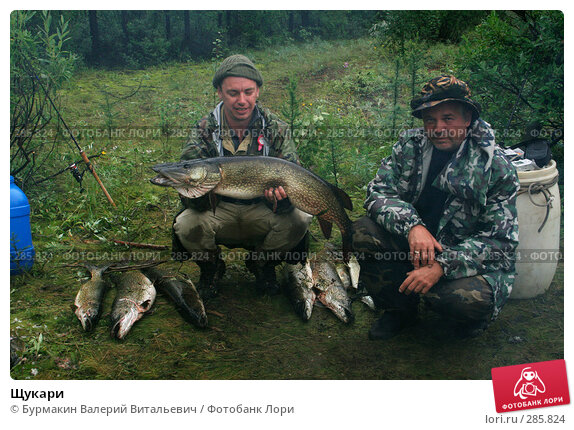 Щукари, фото № 285824, снято 4 августа 2007 г. (c) Бурмакин Валерий Витальевич / Фотобанк Лори