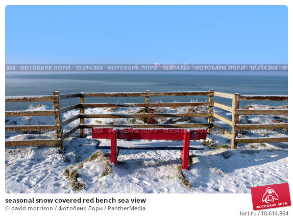 seasonal snow covered red bench sea view. Стоковое фото, фотограф david morrison / PantherMedia / Фотобанк Лори