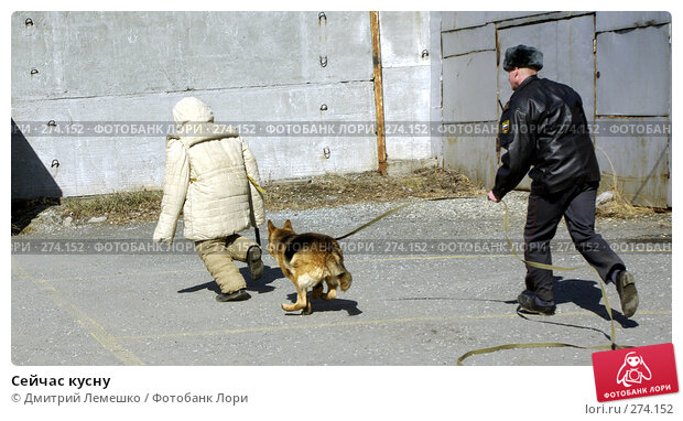 Сейчас кусну, фото № 274152, снято 16 апреля 2008 г. (c) Дмитрий Лемешко / Фотобанк Лори