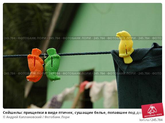 Сейшелы: прищепки в виде птичек, сушащие белье, попавшее под дождь, фото № 245784, снято 31 августа 2007 г. (c) Андрей Каплановский / Фотобанк Лори