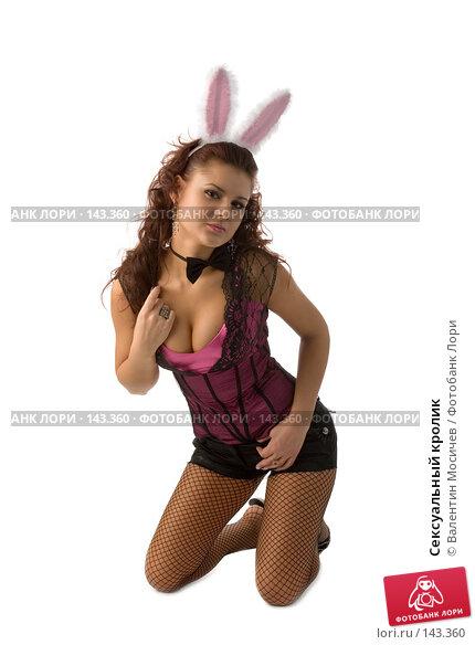 Сексуальный кролик, фото № 143360, снято 8 декабря 2007 г. (c) Валентин Мосичев / Фотобанк Лори