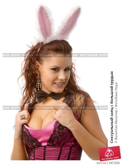 Купить «Сексуальный заяц с большой грудью», фото № 147024, снято 8 декабря 2007 г. (c) Валентин Мосичев / Фотобанк Лори