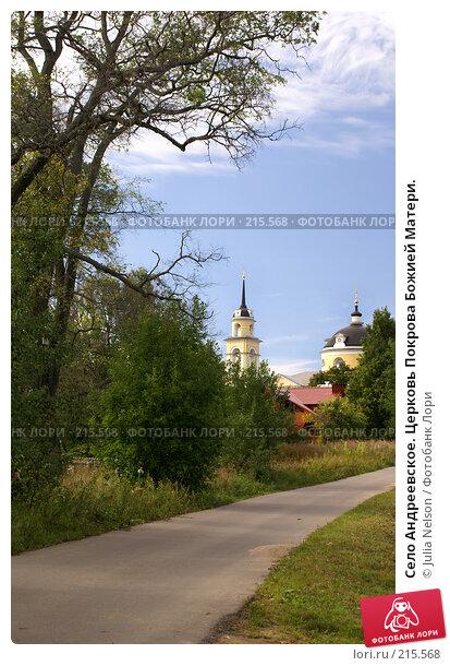 Село Андреевское. Церковь Покрова Божией Матери., фото № 215568, снято 19 августа 2007 г. (c) Julia Nelson / Фотобанк Лори