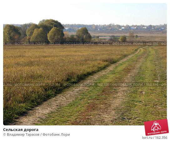 Сельская дорога, фото № 162356, снято 10 октября 2005 г. (c) Владимир Тарасов / Фотобанк Лори