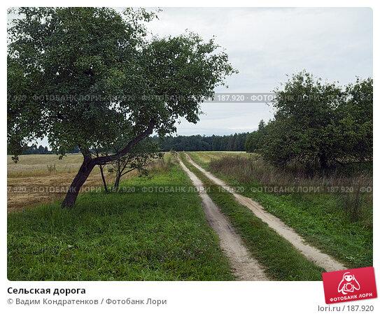 Сельская дорога, фото № 187920, снято 28 июля 2017 г. (c) Вадим Кондратенков / Фотобанк Лори