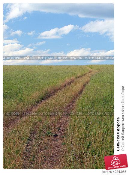 Сельская дорога, фото № 224036, снято 22 июня 2007 г. (c) Сергей Лаврентьев / Фотобанк Лори