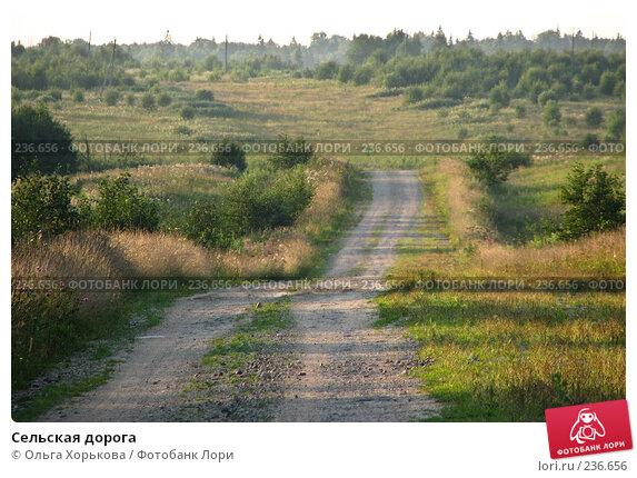 Сельская дорога, фото № 236656, снято 6 августа 2007 г. (c) Ольга Хорькова / Фотобанк Лори