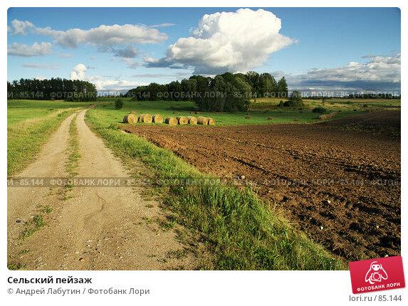 Сельский пейзаж, фото № 85144, снято 1 сентября 2007 г. (c) Андрей Лабутин / Фотобанк Лори