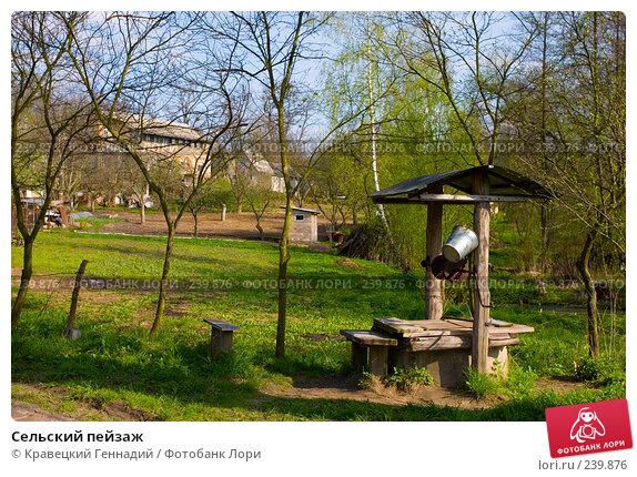 Купить «Сельский пейзаж», фото № 239876, снято 24 марта 2018 г. (c) Кравецкий Геннадий / Фотобанк Лори