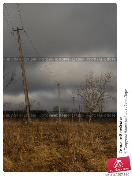 Купить «Сельский пейзаж», фото № 257560, снято 12 апреля 2008 г. (c) Тавруева Надежда / Фотобанк Лори