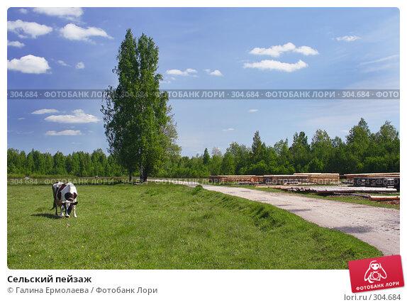 Сельский пейзаж, фото № 304684, снято 24 мая 2008 г. (c) Галина Ермолаева / Фотобанк Лори