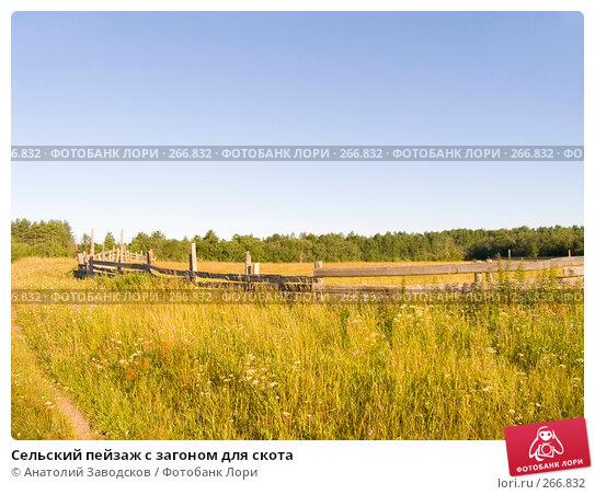 Сельский пейзаж с загоном для скота, фото № 266832, снято 1 августа 2006 г. (c) Анатолий Заводсков / Фотобанк Лори