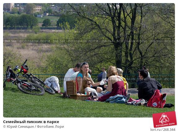 Семейный пикник в парке, фото № 268344, снято 27 апреля 2008 г. (c) Юрий Синицын / Фотобанк Лори