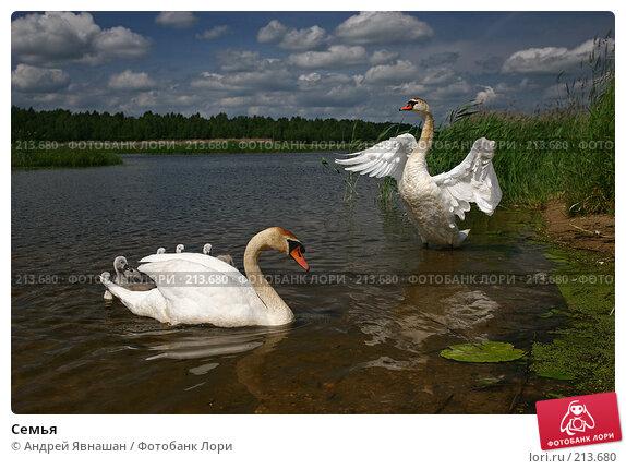 Купить «Семья», фото № 213680, снято 14 июня 2007 г. (c) Андрей Явнашан / Фотобанк Лори