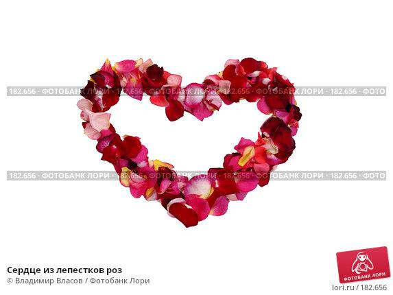 Сердце из лепестков роз, фото № 182656, снято 19 января 2008 г. (c) Владимир Власов / Фотобанк Лори