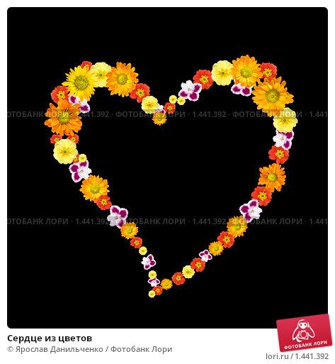 Купить «Сердце из цветов», фото № 1441392, снято 16 июля 2020 г. (c) Ярослав Данильченко / Фотобанк Лори