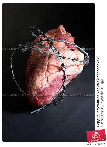 Купить «Сердце, опутанное колючей проволокой», фото № 86892, снято 28 января 2006 г. (c) Иван Сазыкин / Фотобанк Лори
