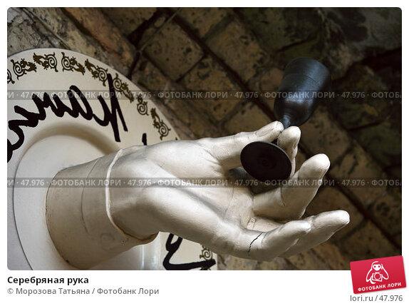 Серебряная рука, фото № 47976, снято 30 декабря 2006 г. (c) Морозова Татьяна / Фотобанк Лори