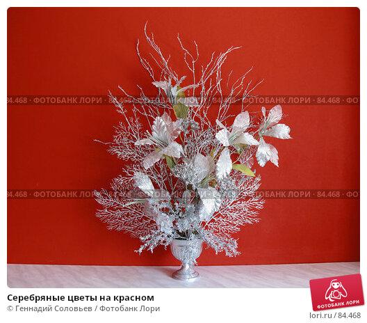 Серебряные цветы на красном, фото № 84468, снято 15 сентября 2007 г. (c) Геннадий Соловьев / Фотобанк Лори
