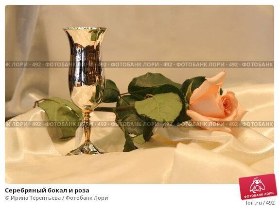 Серебряный бокал и роза, эксклюзивное фото № 492, снято 26 июля 2005 г. (c) Ирина Терентьева / Фотобанк Лори