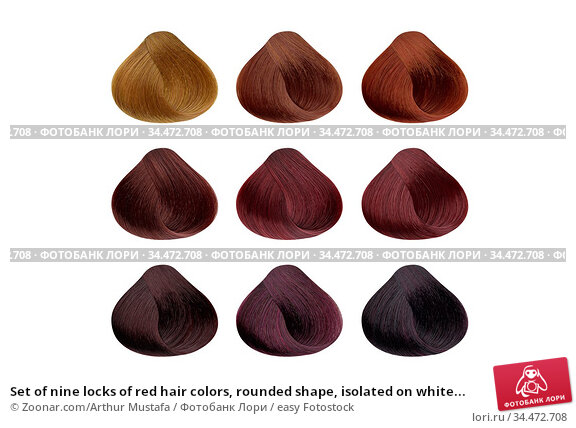 Set of nine locks of red hair colors, rounded shape, isolated on white... Стоковое фото, фотограф Zoonar.com/Arthur Mustafa / easy Fotostock / Фотобанк Лори