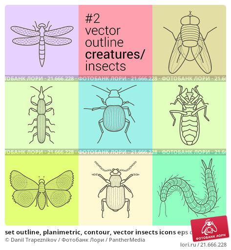Купить «set outline, planimetric, contour, vector insects icons eps collection creatures kit», фото № 21666228, снято 24 февраля 2019 г. (c) PantherMedia / Фотобанк Лори