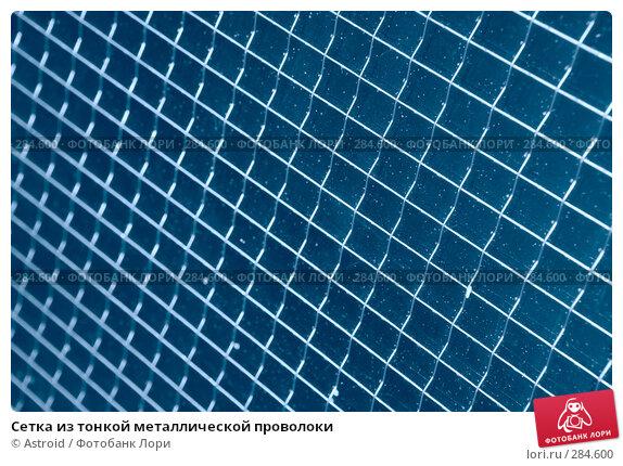 Сетка из тонкой металлической проволоки, фото № 284600, снято 11 мая 2008 г. (c) Astroid / Фотобанк Лори