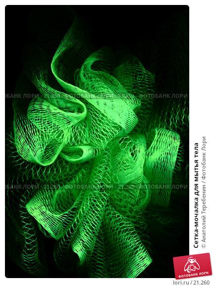 Сетка-мочалка для мытья тела, фото № 21260, снято 23 октября 2016 г. (c) Анатолий Теребенин / Фотобанк Лори