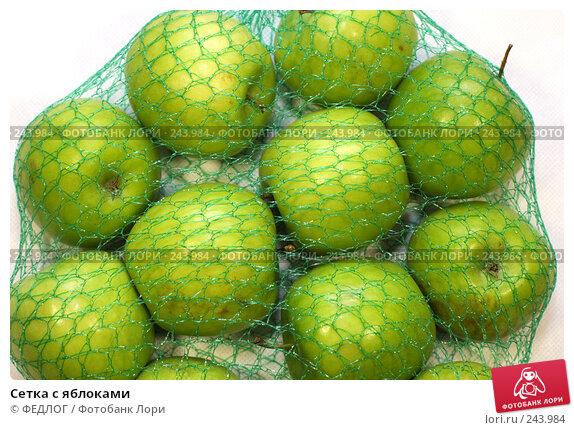 Сетка с яблоками, фото № 243984, снято 6 апреля 2008 г. (c) ФЕДЛОГ.РФ / Фотобанк Лори