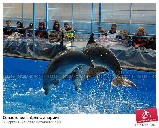 Купить «Севастополь (Дельфинарий)», фото № 148868, снято 1 апреля 2007 г. (c) Сергей Шульгин / Фотобанк Лори