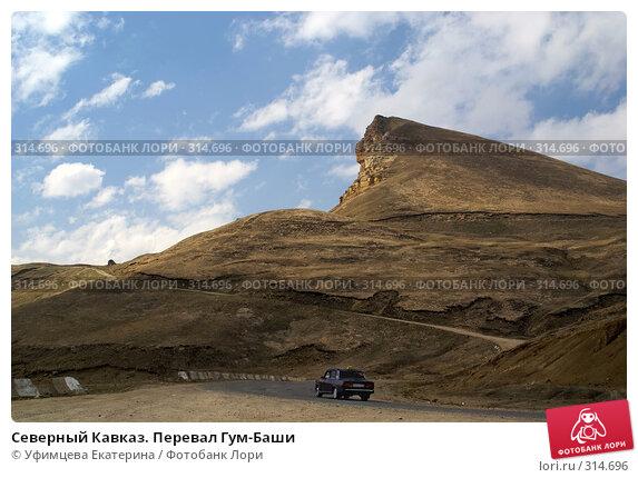 Северный Кавказ. Перевал Гум-Баши, фото № 314696, снято 25 июня 2017 г. (c) Уфимцева Екатерина / Фотобанк Лори