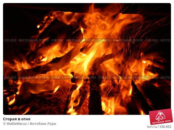 Сгорая в огне, фото № 330852, снято 11 июня 2008 г. (c) WalDeMarus / Фотобанк Лори